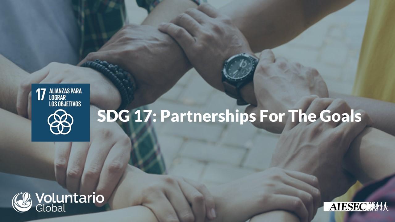 Objetivo de Desarrollo Sostenible N°17: Alianzas Para Lograr los Objetivos